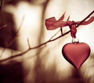 daldaki kalp